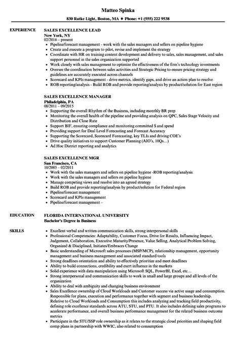 Excellent Resume Exles by Sle Of Excellent Resume 28 Images Successful Resume