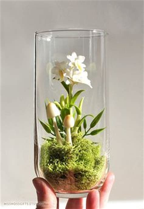 glass container gardening 1000 images about glass container gardening on