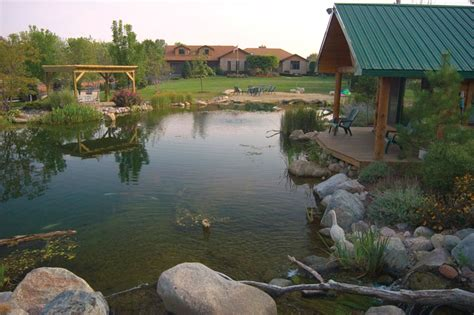 Backyard Garden Designs And Ideas Pond Or Pool The Fierce And Divisive Swim Pond Debate