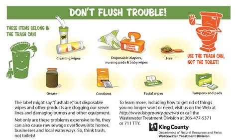 Cing Toilet Chemical Alternatives by Don T Flush Trouble King County