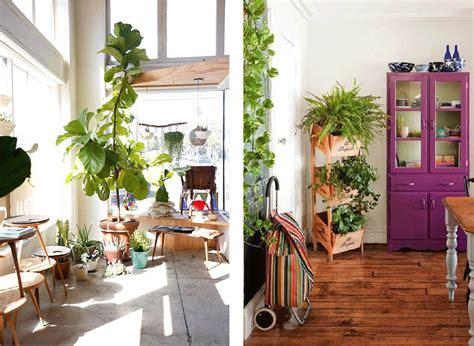 decorar rincon con plantas hestia dise 209 o la vida en verde plantas