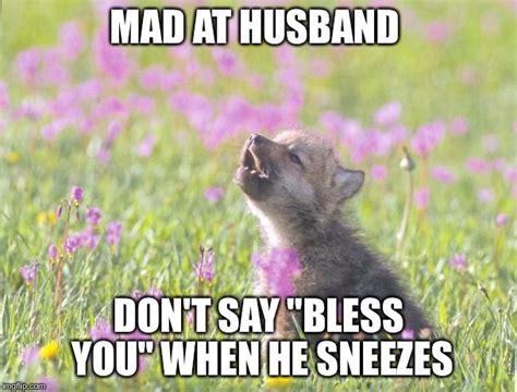 Mad Wolf Meme - baby insanity wolf meme imgflip