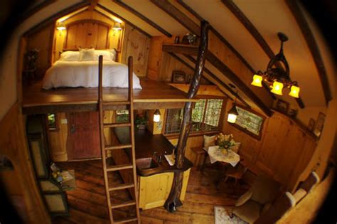 Backyard Yurt Pete Nelson A Treehouse Building Addict Pro And His
