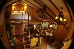 treehouse masters irish cottage inspiration decorating - Treehouse Masters Irish Cottage