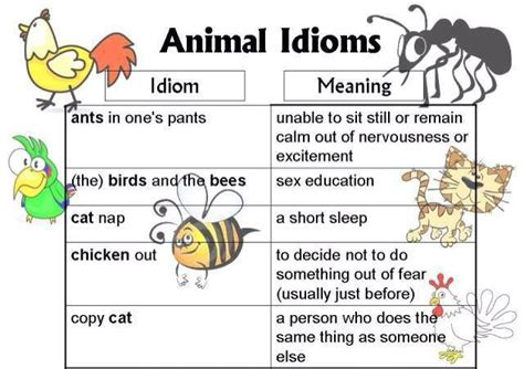 17 best images about englisg idioms on