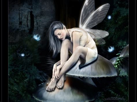 wallpaper dark fairy fairy wallpaper fairies wallpaper 6349171 fanpop