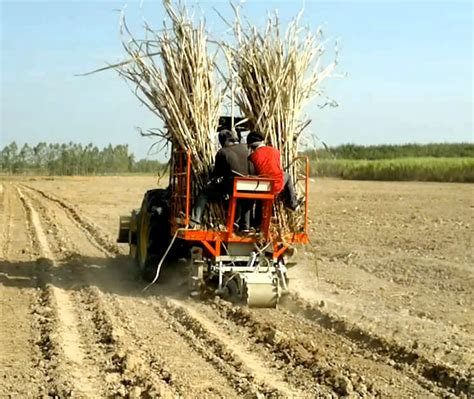 Sugarcane Planter by Equipments Machinery Types Used In Sugarcane Crop