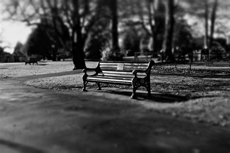 lonely bench lonely benches stocks graphics poster tutorial gimp