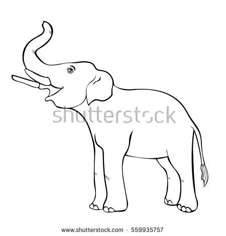 elephant trunk coloring page smiling elephant sideways trunk coloring vector stock
