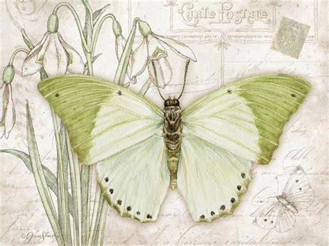 Butterfly Decoupage - shasky liveinternet