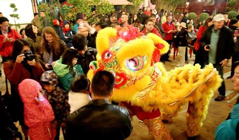 new year parade in houston 2016 exploring lunar new year at match 365 houston