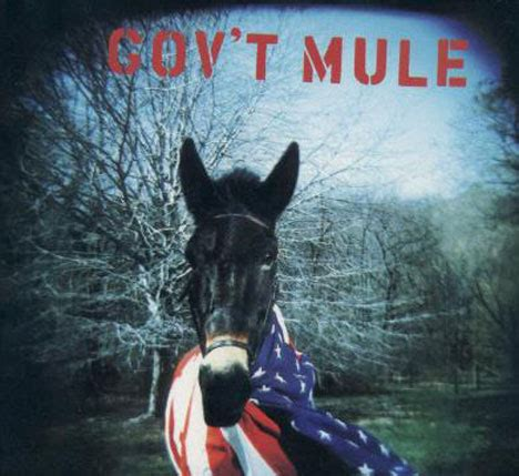 gov't mule 5/6/2001 @ music midtown festival – atlanta, ga