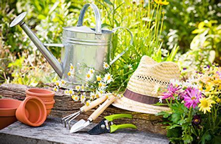 gartenbedarf auf rechnung maag garden pflanzenschutz in haus und garten einfach