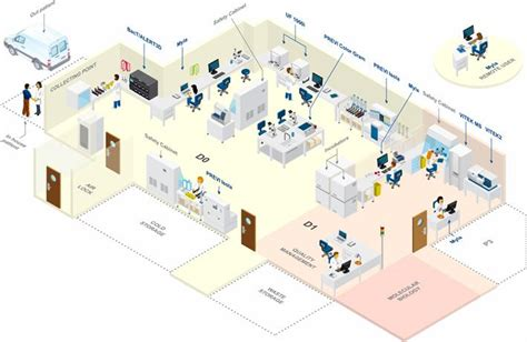 laboratory workflow time to result clinical diagnosis systems by biom 233 rieux