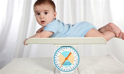 weight loss 9 month baby obese babies placed on weight loss programs kidspot