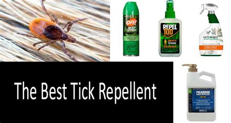 top 18 tick repellents for humans dogs and yard approved