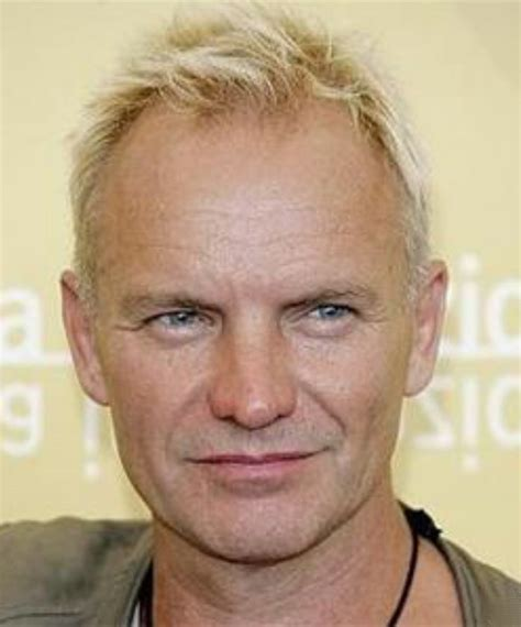 sting hairstyles image gallery sting hairstyle