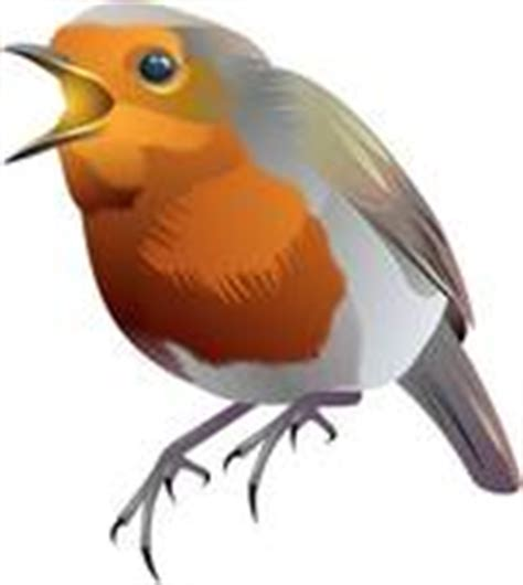 clipart of blue bird with orange breast k6581685 search