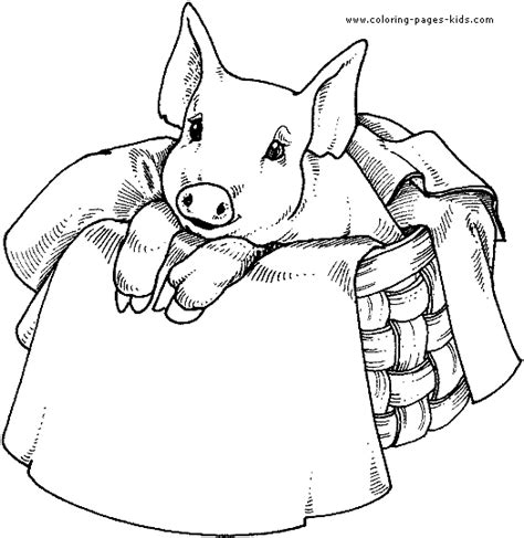 coloring pages charlotte s web free charlotte s web free printable coloring pages sonlight