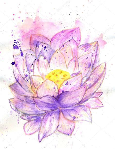 fior di loto foto acquerello fiore di loto foto stock 169 artshock