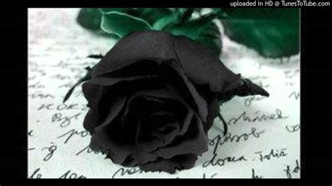 theme rose et noir georgio rose noire youtube