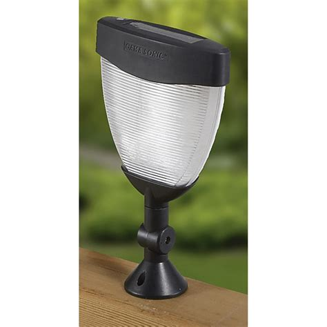 tulip solar lights 8 tulip solar lights 130853 solar outdoor lighting at