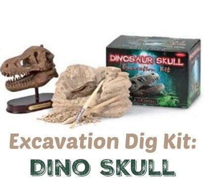 excavation dig kit: dino skull ~ gift idea for kids who