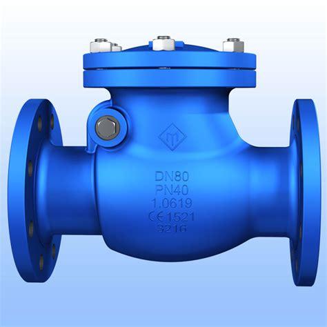 swing valve din swing check valve