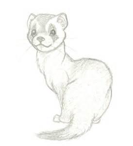 ferret by wolfypuppy on deviantart