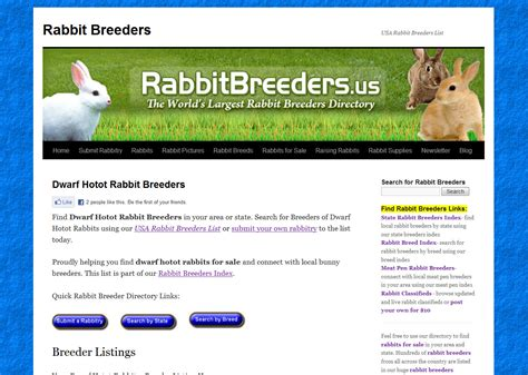 Nd Hotot Nd hotot rabbits for sale usa rabbit breeders
