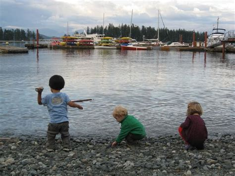Kursi Quadra taku resort and marina quadra island kanada review