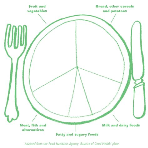 healthy plate template grab 5 curriculum pack blank balance of health plate
