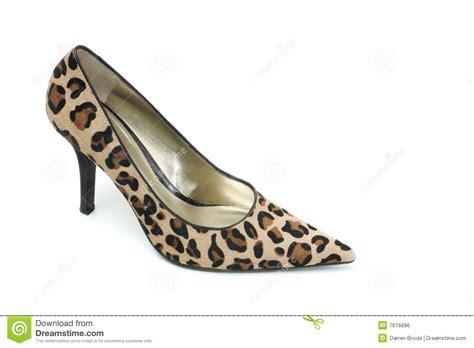 leopard high heels leopard high heels heels me