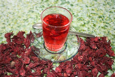 Teh Bunga Rosella Merah referensi penyakit seputar manfaat tanaman rosella merah