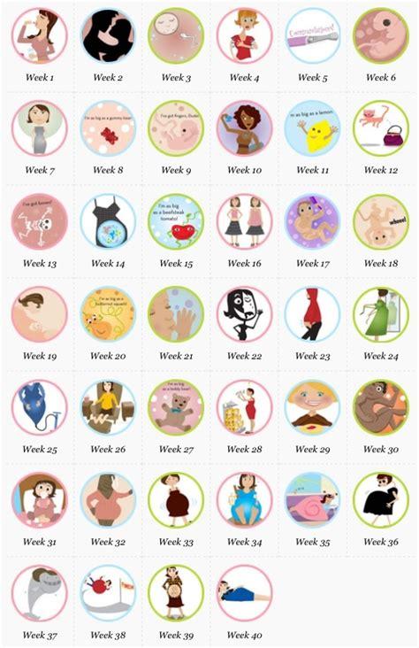 0 40 Pregnancy Calendar 1000 Ideas About Pregnancy Due Date Calendar On