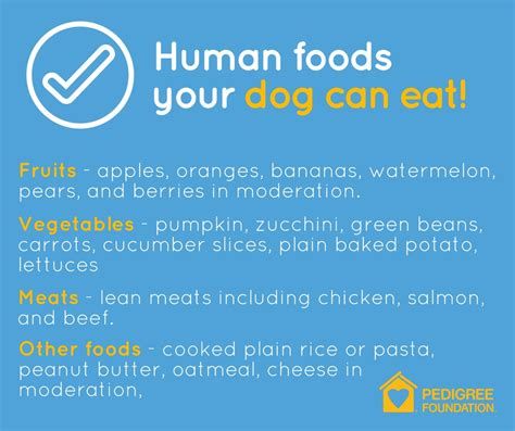 what human food can dogs eat bunkblog part 2 human foods your dog can eat pedigree foundation