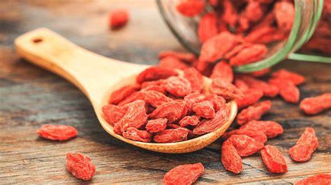 Jual Buah Goji Berry Segar 8 healthy facts about the goji berry