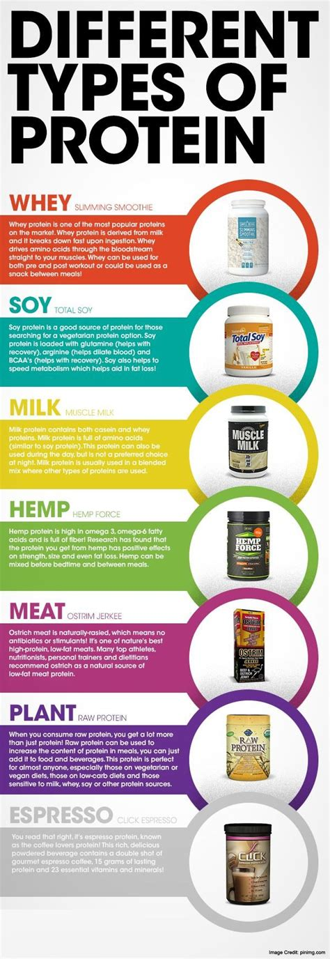 protein types protein shakes for weight loss does it promote weight loss