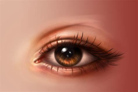 realistic eye realistic eye from how to paint realistic in adobe photoshop
