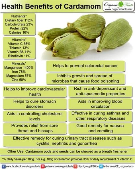 Cardamom Based Home Remedies by Health Benefits Of Cardamom Organic Facts Health