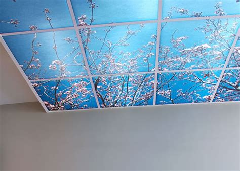 Colored Suspended Ceiling Tiles 8 Best Images About Printed Ceilings And Ceiling Tiles On