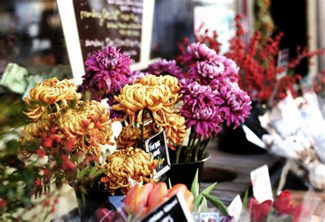 when to buy valentines day flowers how to buy great s day flowers cool material