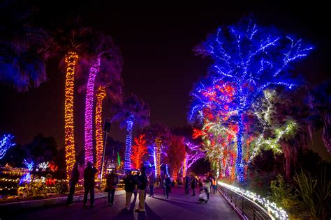 zoo lights phx zoo lights iron