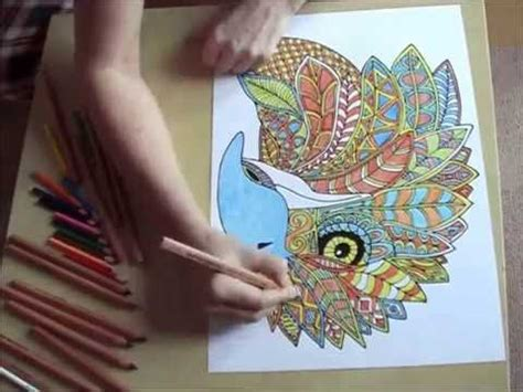 antistresove omalovanky orel anti stress coloring eagle