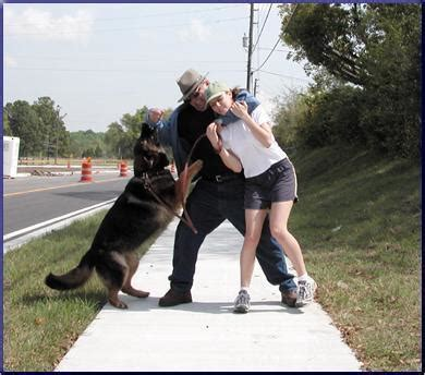 Protection From Dogs by Trainers In Minneapolis Dogtrainersinminneapolis