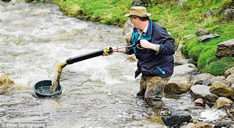 How To Find Uk From River Prospectors To Canny Investors Why Everyone S On The Hunt For Gold Daily