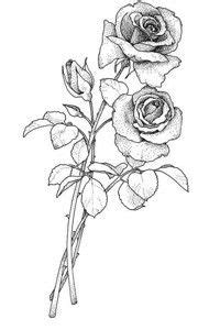 image result for rose with stem drawing bordado pinterest