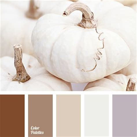 quot dusty quot brown quot dusty quot lilac beige chocolate color gray and beige gray lilac lavender