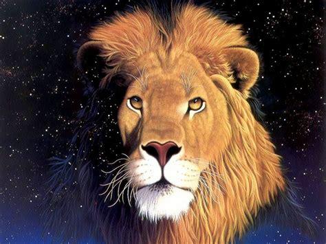 Imagenes De Leones En Movimiento | fotos hd de leones fondos de escritorio gratis