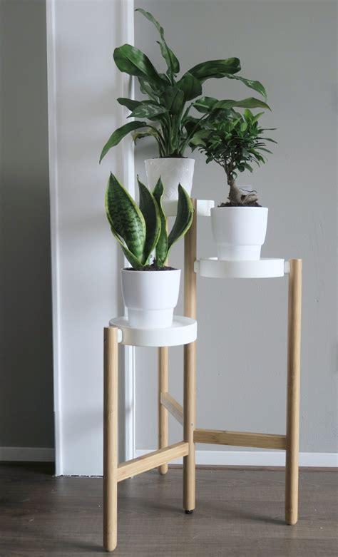 planten in badkamer dode planten in de badkamer ik hoop nu niet meer